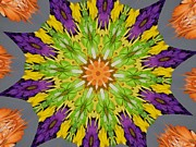 Purple Kaleidoscopes. Prints - Flower Kaleidoscope 10-1 Print by Mary Baka