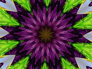 Purple Kaleidoscopes. Prints - Flower Kaleidoscope 10-13 Print by Mary Baka
