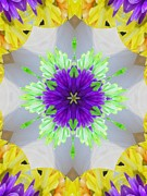 Purple Kaleidoscopes. Posters - Flower Kaleidoscope 6-28 Poster by Mary Baka