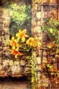 Ruins Metal Prints - Flower - Lily - Yellow Lily  Metal Print by Mike Savad
