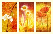 Emotions Mixed Media Prints - Flower Love Triptic Print by Mo T