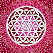 Christopher Sheehan Posters - Flower of Life Poster by Christopher Sheehan
