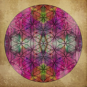 Sacred Geometry Posters - Flower of Life Poster by Filippo B