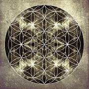 Sacred Geometry Posters - Flower of Life Silver Poster by Filippo B