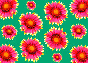Label Prints - Flower pattern Print by Tommy Hammarsten
