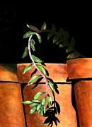 Karyn Robinson - Flower Pots