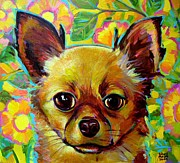 Robert Phelps Robert Phelps Art Framed Prints - Flower Power Chihuahua Framed Print by Robert Phelps