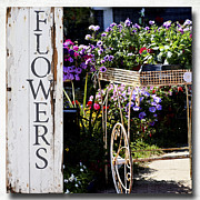 Provence Mixed Media Posters - Flower Shop Print Poster by AdSpice Studios