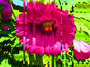 Buy Wall Art Digital Art Posters - Flower Study 2 - Hot Pink Flower - By Sharon Cummings Poster by Sharon Cummings