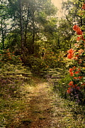 Woodlands Prints - Flower walk Print by Jasna Buncic