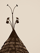 Weathervane Posters - Flower Weathervane Poster by Brenda Conrad