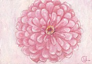 Zinnia Paintings - Flowering Ballet Pink Zinnia by Cecely Bloom