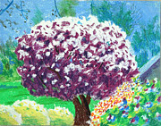 Watercolors Pastels Originals - Flowering Cherry II by Charles Zigmund