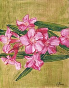 Oil Paintings - Flowering Oleander by Cecely Bloom