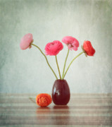 Still Life Photo Prints - Flowers 4 Print by Kristin Kreet