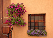Window Bars Prints - Flowers and a Window Print by Uri Baruch