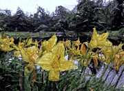 Donna Cavanaugh - Flowers by the Pond