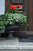 Potted Flowers Prints - Flowers in Front of a Door in Charleston Print by Bruce Gourley