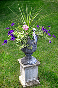 Urn Photos - Flowers in Garden Urn by Olivier Le Queinec