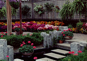 Baskets Photo Originals - Flowers in Plantatarium by Ruth  Housley