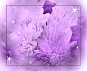 Mikki Cucuzzo Framed Prints - Flowers in purple Framed Print by Mikki Cucuzzo