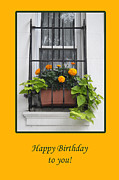 Greeting_card Framed Prints - Flowers in the Window Framed Print by Randi Grace Nilsberg