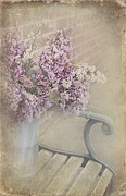 Svetlana Sewell - Flowers on a Bench