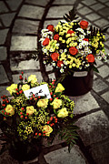 Flower Basket Photos - Flowers on the market in France by Elena Elisseeva