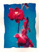 Emulsion Prints - Flowers On Watercolor Paper Print by Corey Hochachka