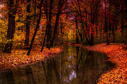 Flowing Through The Colors Of Fall Print by Hannes Cmarits