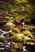 Gatlinburg Tennessee Prints - Flowing Water Print by Lena Auxier