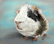 Pig Pastels Prints - Fluffball Print by Hannah Taylor