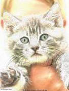 Fluffy Kitten Print by PainterArtist FIN