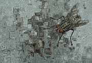 Visual Language Digital Art - Fly On The Wall by Jack Zulli