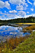 Rd Prints - Fly Pond in the Adirondacks II Print by David Patterson