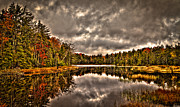 Fir Trees Prints - Fly Pond Marsh II Print by David Patterson