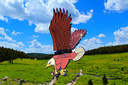 Art - Flying-Eagle Geocoin by Shane Bechler