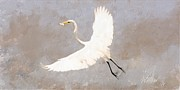 Forest Stiltner - Flying Egret