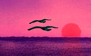 Birds Paintings - Flying in Purple Sunset by Mario  Perez