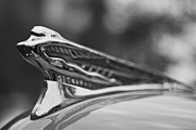 Bryan Freeman Metal Prints - Flying Lady - 1946-48 DeSoto By Chrysler Metal Print by Bryan Freeman