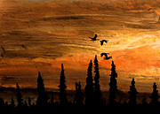 Night Scene Pastel Posters - Flying Low Poster by R Kyllo