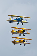 Aviation Art - Flying Steermen  by Puget  Exposure