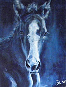 Filly Art Posters - Foal Indigo Poster by Go Van Kampen