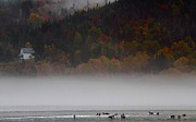 Cabot Prints - Fog along the Cabot Trail during autumn Print by Jetson Nguyen