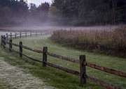Split Rail Fence Framed Prints - Fog and Fence  Framed Print by Tim  Fitzwater