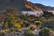 Sunrise Art - Fog At Sunrise - Guadalupe Mountains by Stephen  Vecchiotti