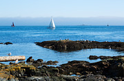 Juan De Fuca Photos - Fog bank in the Strait of Juan de Fuca by Louise Heusinkveld