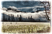 Mick Anderson - Fog Beyond the Tilled Field