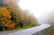 Winding Road Posters - Fog Fall Color Highland Scenic Highway Poster by Thomas R Fletcher