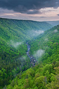 Blackwater Canyon Framed Prints - Fog in Blackwater Canyon Framed Print by Michael Blanchette